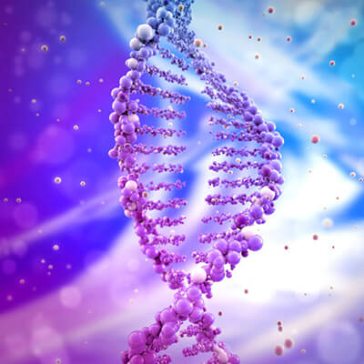 Image of a DNA double helix